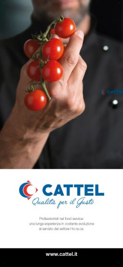 cattel_banner_istituzionale_03