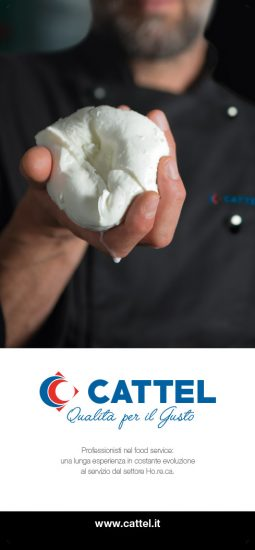 cattel_banner_istituzionale_04